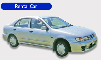 Cheap Car Rental Nelson Nz